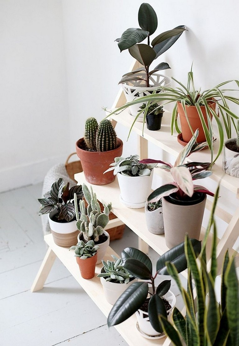 11 Inspiring Diy Plant Stand Ideas To Fill Your Home With ... on House Plant Stand Ideas  id=22108